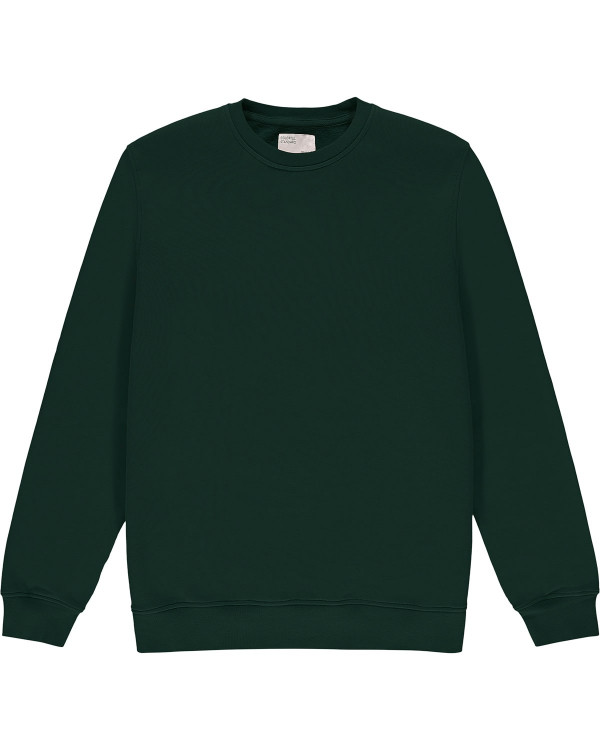 COLORFUL STANDARD CREW GREEN